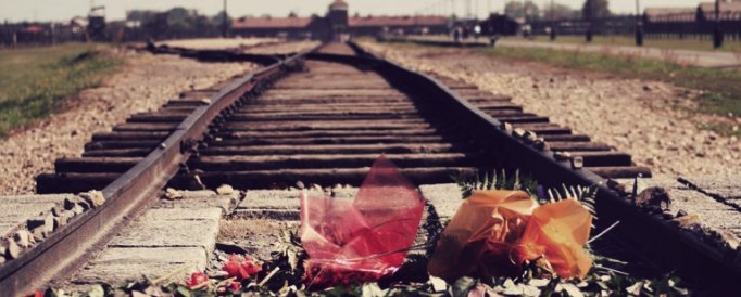 Auschwitz railroad flowers 685x275